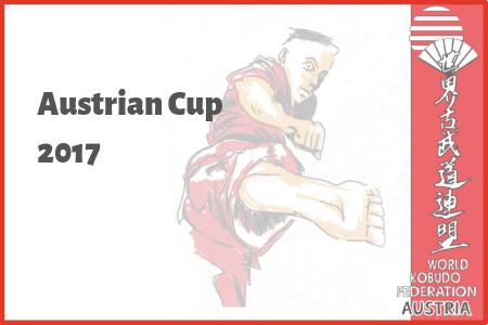 Austrian Cup 2017